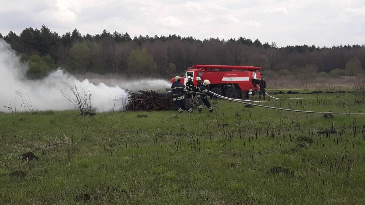 На Сумщині рятувальники спільно з лісниками ліквідували умовну пожежу лісового масиву, фото-2