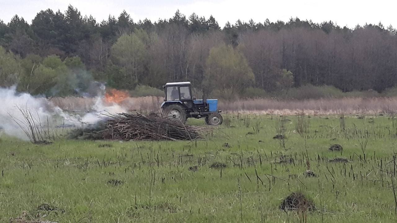 На Сумщині рятувальники спільно з лісниками ліквідували умовну пожежу лісового масиву, фото-1