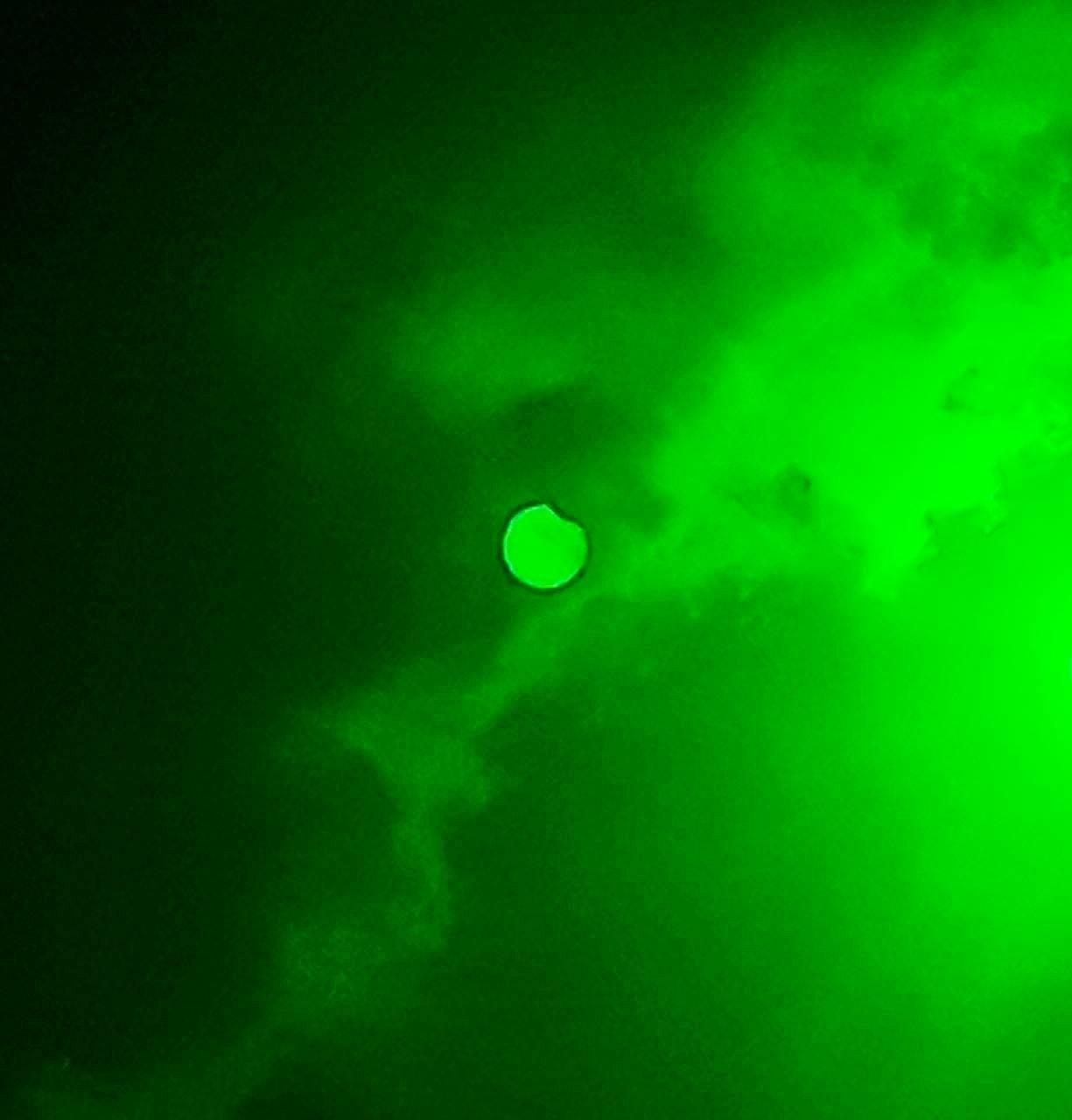 У Сумах зафіксували часткове сонячне затемнення, фото-1