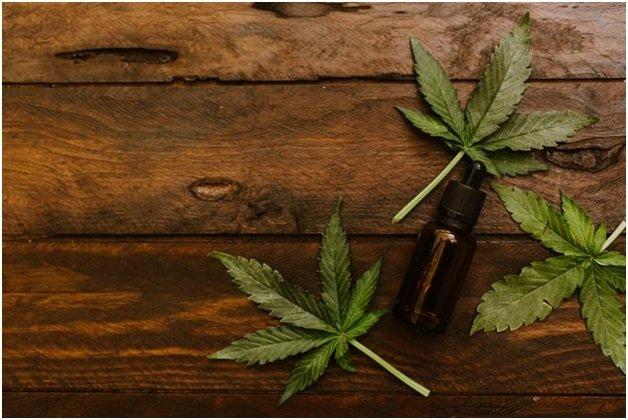 марихуана вред или польза